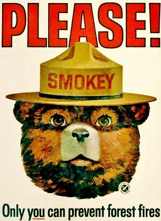 "1965 SMOKEY The BEAR ""Only You"""