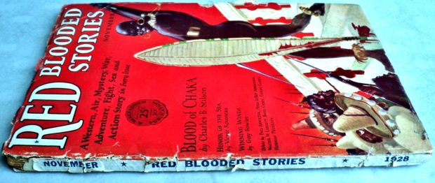 Red Blooded Stories - Nov. 1928 (Outside Spine)